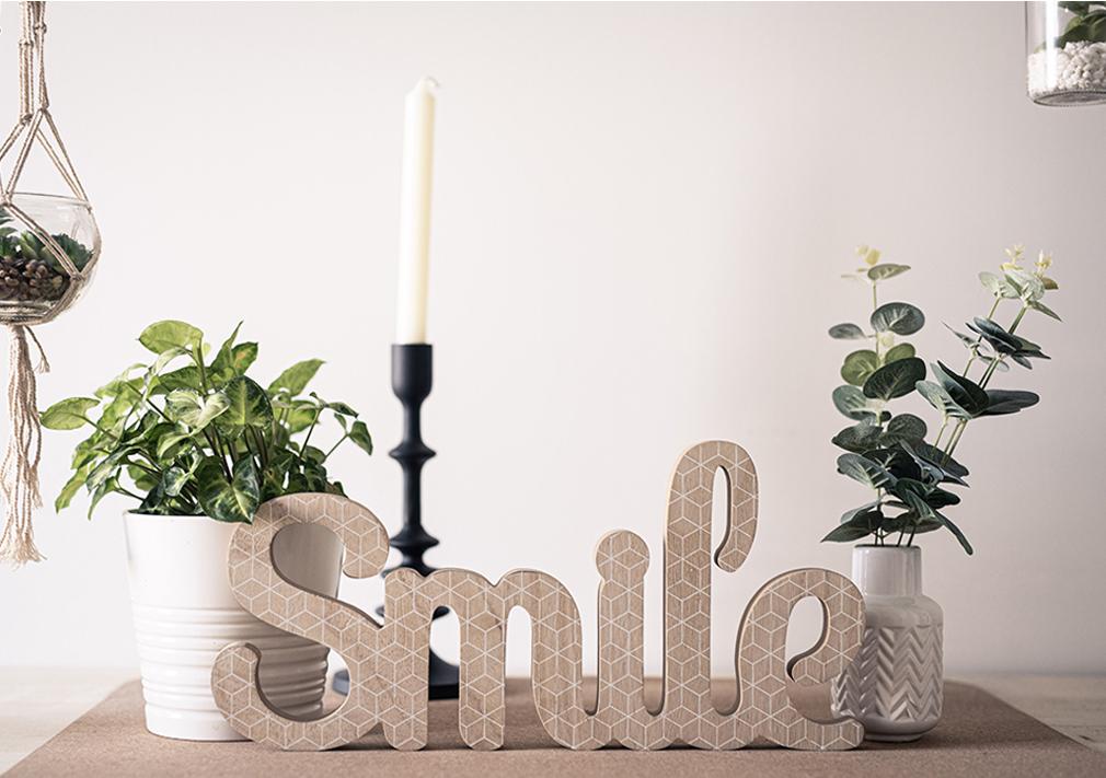 IMAGE SMILE VF